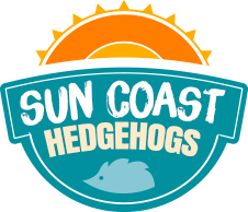 Sun Coast Hedgehogs